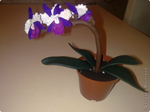 Орхидеи мои, это первая серьезная работа, ну и пусть что чуточку не совсем то, очень старалась фото 1