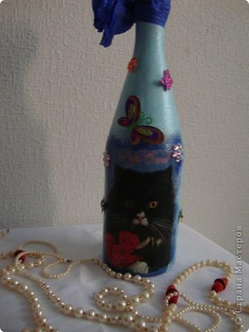 Влюблённая парочка и мудрый кот. фото 2
