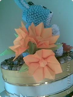 Мои цветы фото 8