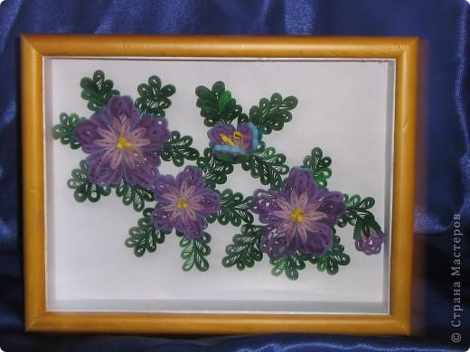 По просьбе мамы сделала подарок для её одноклассника. Очень давно вынашивала желание сделать квиллинговую работу (более-менее крупную), но все как-то страшновато было, а тут появился повод и я решилась. Лиловые цветы Art-KHome  и её МК http://stranamasterov.ru/node/104303, за который огромное спасибо, долго не давали спать спокойно, очень уж цветочки нравились. Конечно, моя работа на расстоянии звезды от работы Анны, но я осталась довольна и процессом работы, и конечным результатом. К сожалению, совершенно случайно стерла с фотоаппарата все фотографиии, кроме одной. Поэтому фото работы без рамки осталось в единственном числе. фото 2