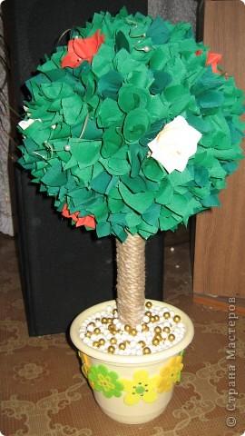 Вот такое дерево теперь растёт у моей мамы. Подарок ко Дню Матери. ОЧЕНЬ долго собиралась и вот ....... фото 1