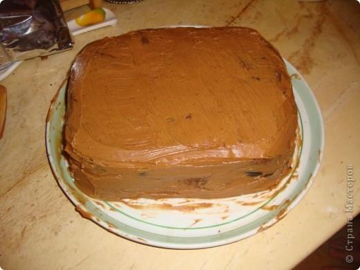 Делала ко дню рождения тортик, решила поснимать процесс. А так как готовки было очень много, тортик вышел простенький и быстрый. Сделать такой можно буквально за час. фото 2