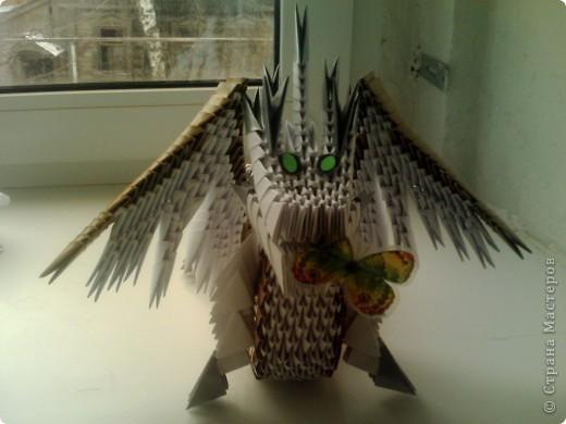 Дракоша фото 4