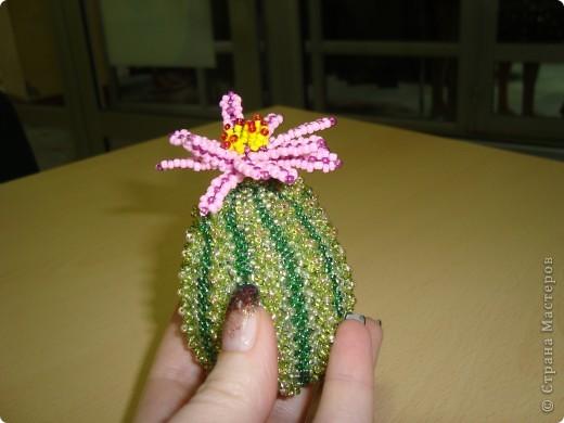 Такой кактус я подарила коллеге просто так,чтобы было приятно.За основу взята деревянная заготовка,а плела по схеме из журнала.