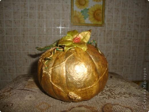 Прошлогодняя тыковка лежала-лежала и превратилась в золотую, да ещё и зацвела!!!)) фото 1