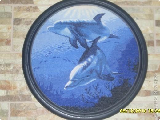 крестом Вышивка Дельфины