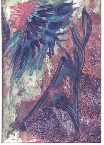 Голубая лагуна фото 2