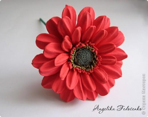 Мой первый цветок!!! фото 1