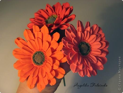 Мой первый цветок!!! фото 5