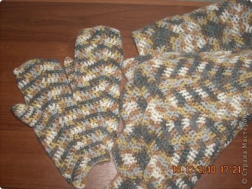 шарф и варежки фото 1