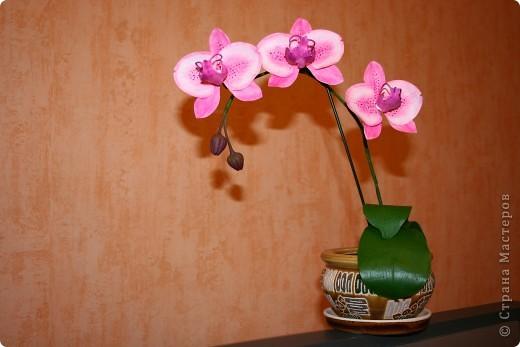 """Работа выполнена из полимерной глины """"Modern"""".  Более подробно о технике изготовления можно узнать на сайте: www.clayart.com.ua"""