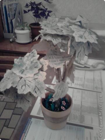 Дерево с кленовыми листьями фото 1