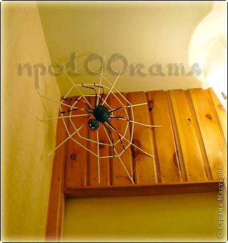 Как только увидела у Флорены паука из газет,сразу решила сделать себе такого же! фото 1