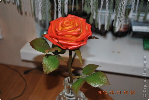 роза из глины Modena фото 1