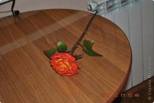 роза из глины Modena фото 5