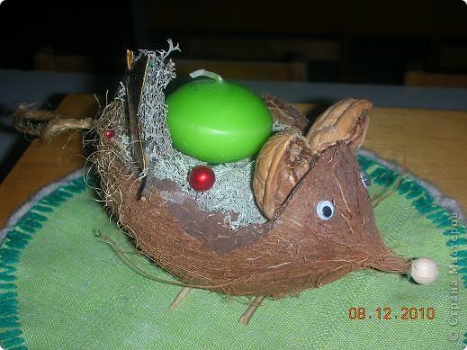 Основа- скорлупа кокосового ореха фото 1