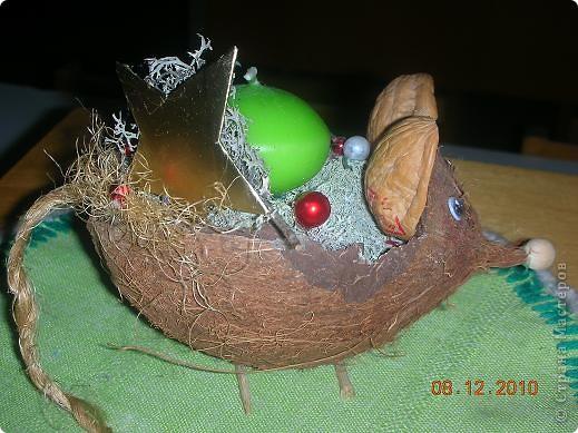 Основа- скорлупа кокосового ореха фото 2