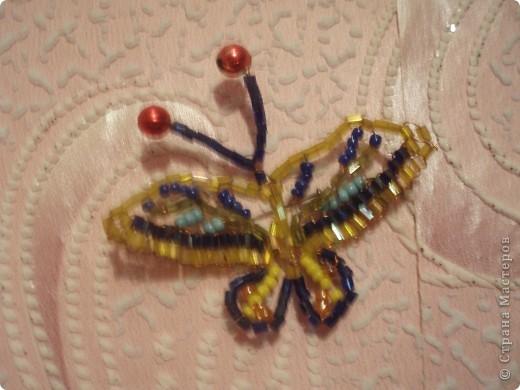 Бабочки и цветочки фото 6