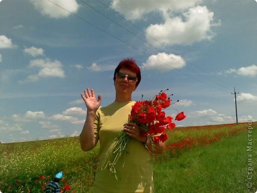 Маки Татьяна Харламова lubab1959 фото 7