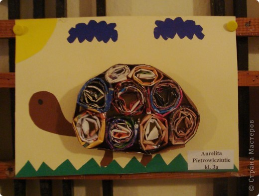 Черепашки фото 4