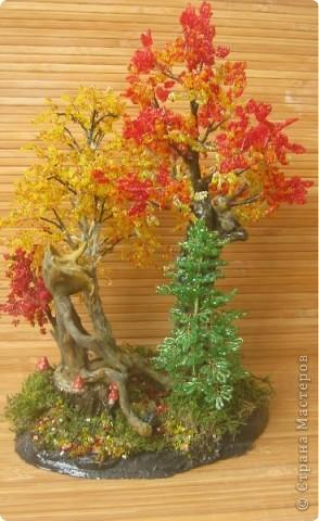 Осень, в сказочном лесу фото 1