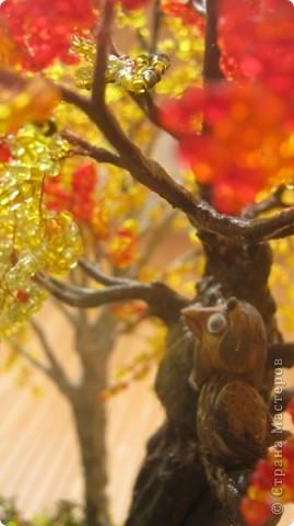 Осень, в сказочном лесу фото 2
