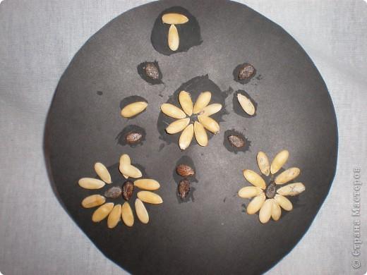 Аппликации выполнены из семян дыни и арбуза. Образцы: фото 7