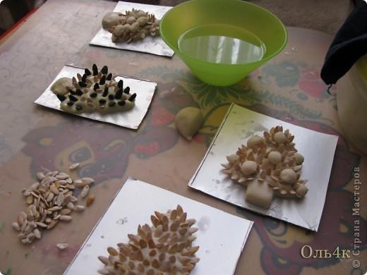 Налепили с сыном ёлочки из солёного теста и семян дыни (можно использовать простые чёрные семечки от подсолнушка, результат хуже не будет) фото 10