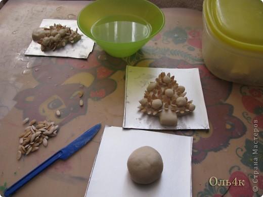 Налепили с сыном ёлочки из солёного теста и семян дыни (можно использовать простые чёрные семечки от подсолнушка, результат хуже не будет) фото 3