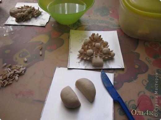 Налепили с сыном ёлочки из солёного теста и семян дыни (можно использовать простые чёрные семечки от подсолнушка, результат хуже не будет) фото 4