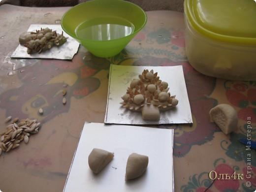 Налепили с сыном ёлочки из солёного теста и семян дыни (можно использовать простые чёрные семечки от подсолнушка, результат хуже не будет) фото 5