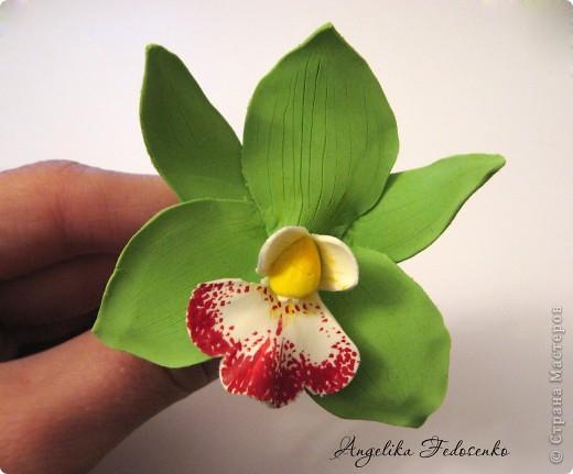 Мои любимые орхидеи, правда еще много недочетов, но результат вполне нравиться))) фото 1