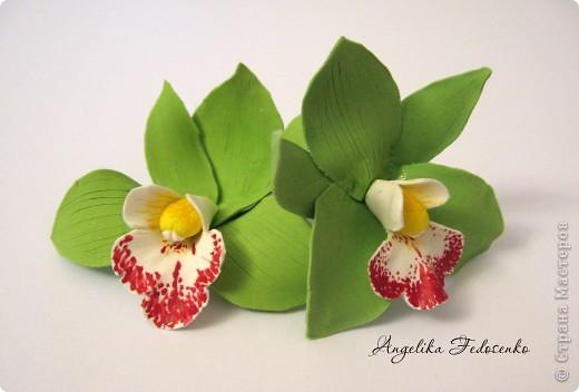 Мои любимые орхидеи, правда еще много недочетов, но результат вполне нравиться))) фото 2