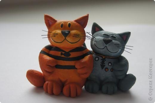 2 кота фото 1