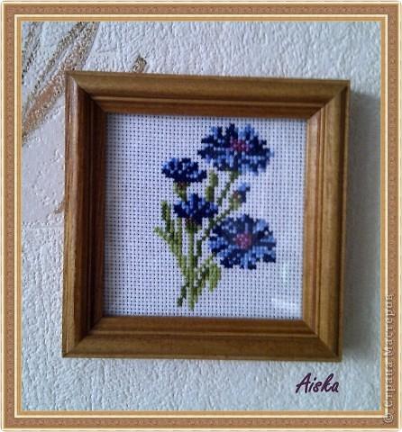 Цветы, которые не увядают фото 1