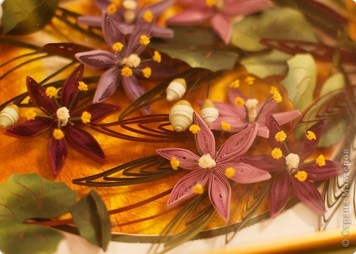 На улице зима, а у меня опять цветы. Представляю очередную курсовую работу. фото 4