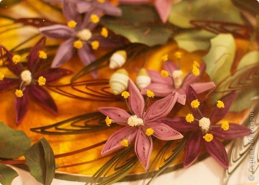На улице зима, а у меня опять цветы. Представляю очередную курсовую работу. фото 3