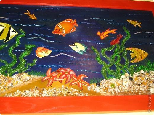 Рыбки:) фото 1