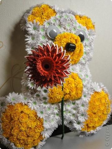 цветочный мишка фото 3