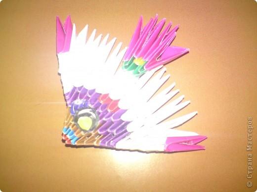 Первые мои работы в модульном оригами) фото 4