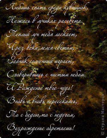 Вечные слова о Вечной Любви.... фото 2
