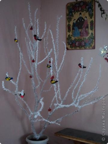 Зимняя рябинка. фото 1