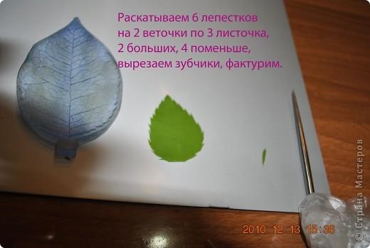 Мастер-класс Лепка МК по лепке розы Часть3-веточки Фарфор холодный фото 1