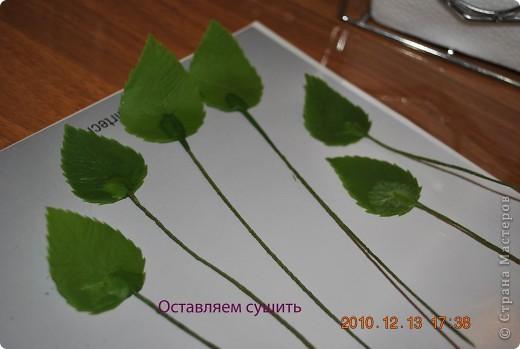 МК по лепке розы. Часть3-веточки. фото 8