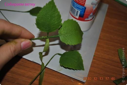 МК по лепке розы. Часть3-веточки. фото 9