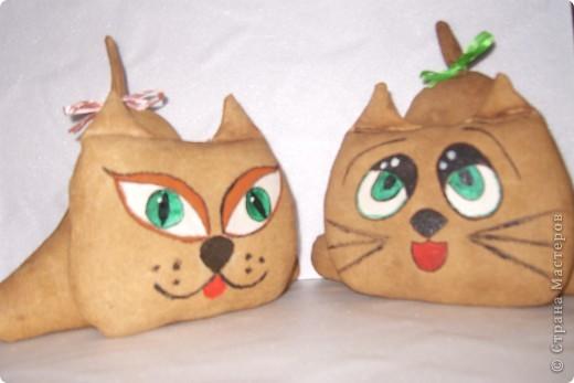 Коты-примитивы фото 1