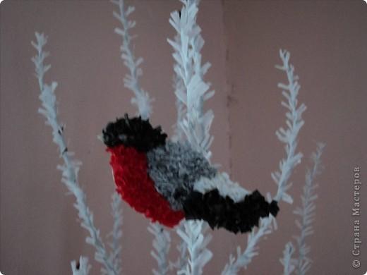 Зимняя рябинка. фото 2