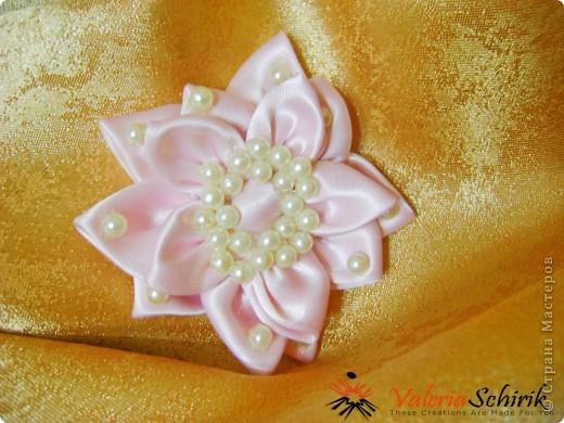 Нежный цветок фото 1