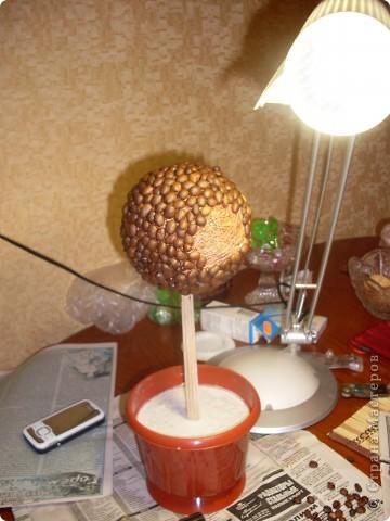 Была идея подруге на Др сотворить кофейное дерево. И я таки его сделала)) фото 6