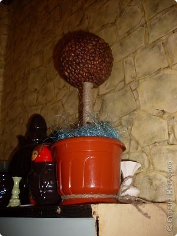 Была идея подруге на Др сотворить кофейное дерево. И я таки его сделала)) фото 8